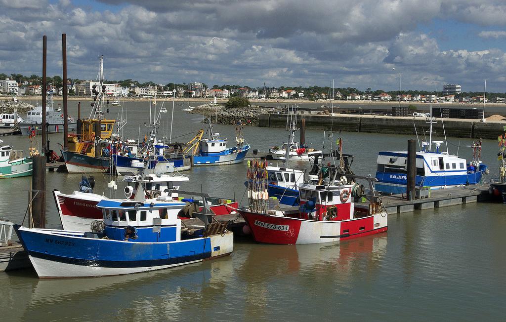 Royan, port de pêche